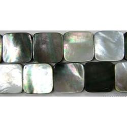 Carré plat Nacre grise 'BLACK LIP' 22mm
