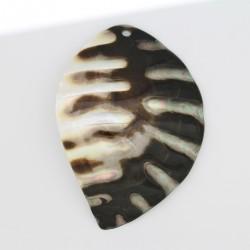 3 feuilles Nacre grise 'BLACK LIP' 95x65mm